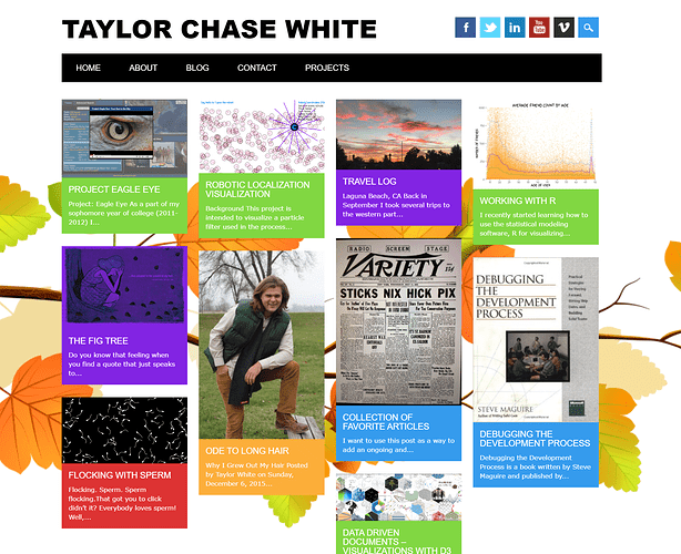 Taylor Chase White dot Com Old - 2
