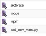node_v_env_bin_files